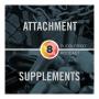 Artwork for Episode 8: Attachment & Supplements