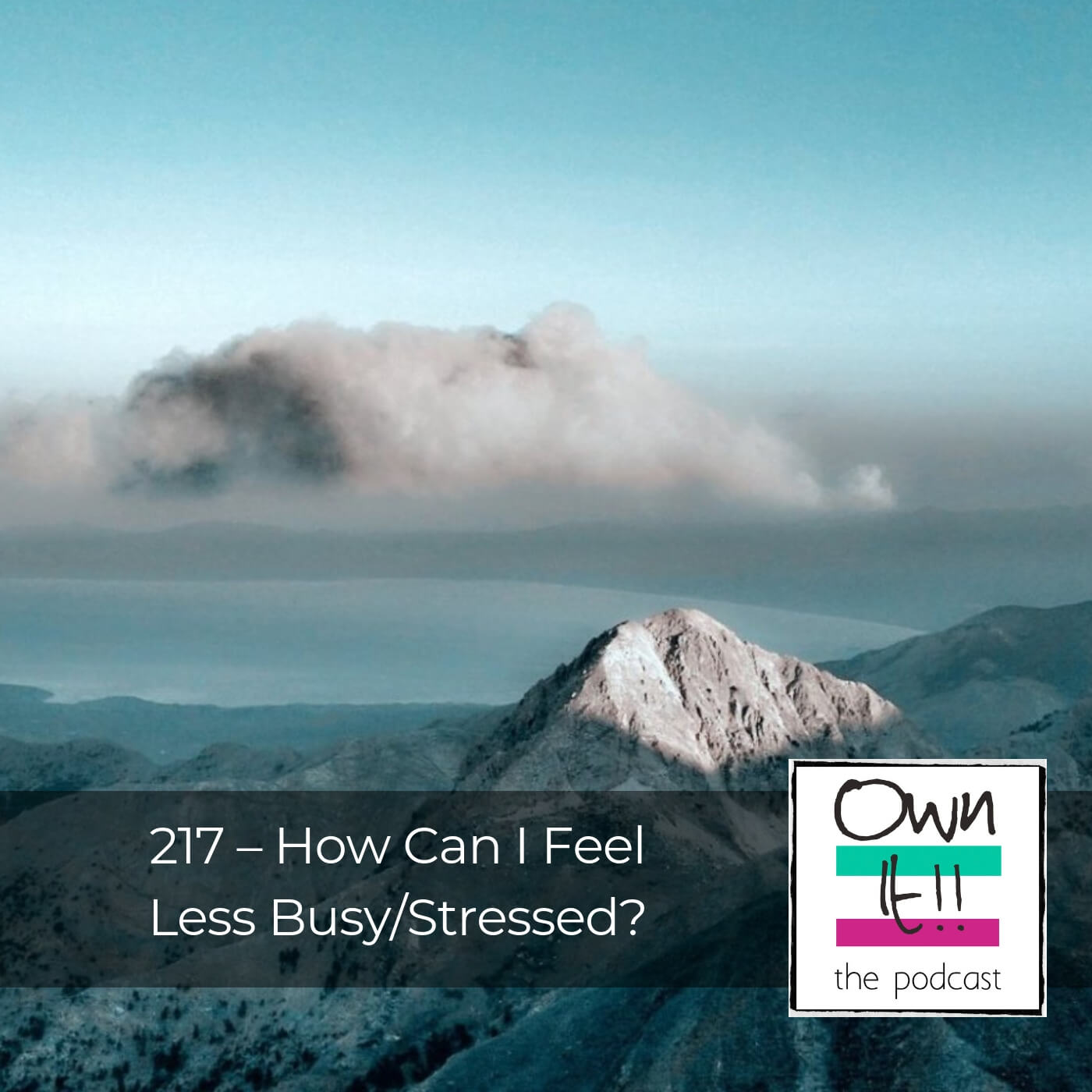 Artwork for Own It! 217 – How Can I Feel Less Busy/Stressed?