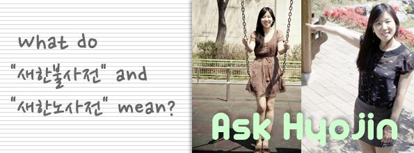 """[Ask Hyojin] What do """"새한불사전"""" and """"새한노사전"""" mean?"""