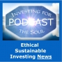Artwork for PODCAST: Low Cost ESG, Sustainable Companies, Robo-Advisor Greenwashing