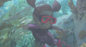 BDH #41 - Finding Nemo Submarine Voyage