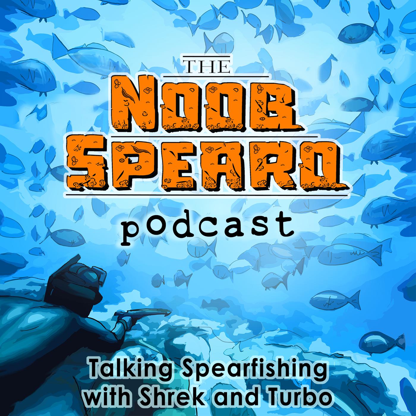 Artwork for NSP:034 101 Freediving For Spearfishing