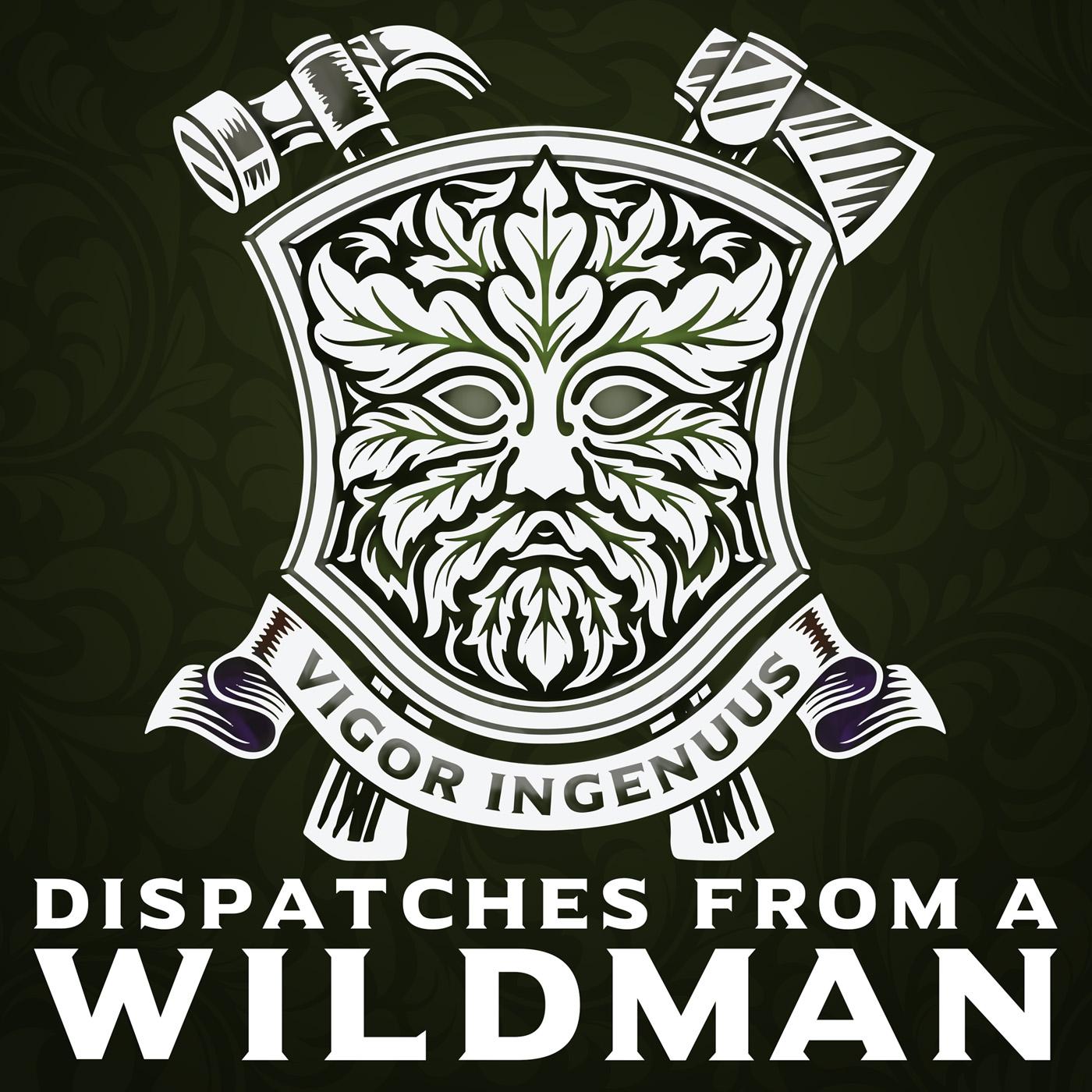 Dispatches From A Wildman show art