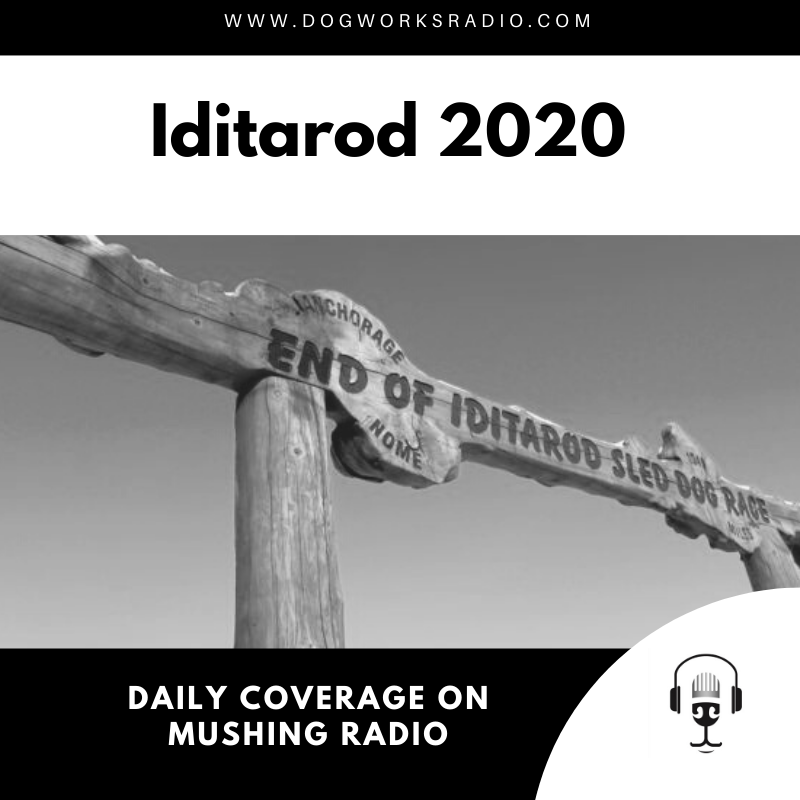 Iditarod 2020 March 19 Coverage