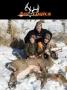 "Artwork for Ani-Logics' Brian Dorcey  ""Protect Your Deer Herd""  HFJ No. 120"