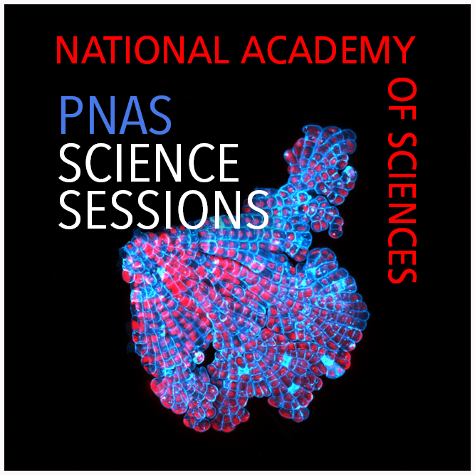 PNAS Science Sessions show art