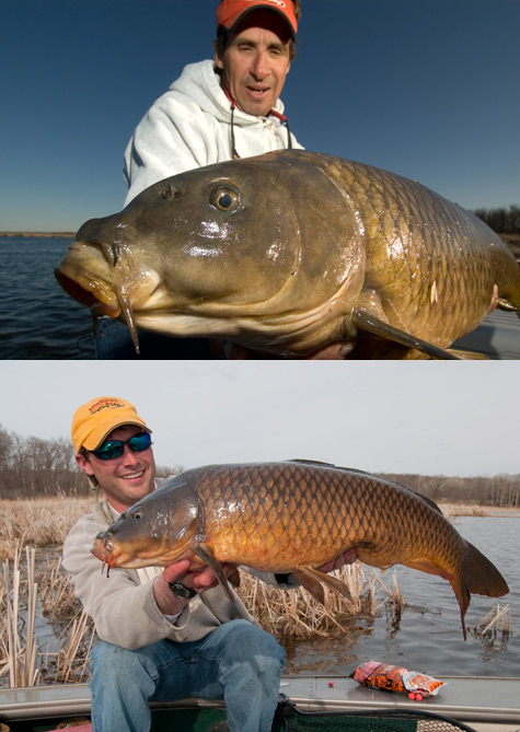 The Carp Show with Jim Lindner and Jeremy Smith  HFJ No.100