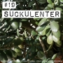 Artwork for 19. Suckulenter. Om aloe vera, paradisträd, lithops mm