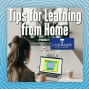 Artwork for Tips for Learning from Home with How to ADHD and Landmark College