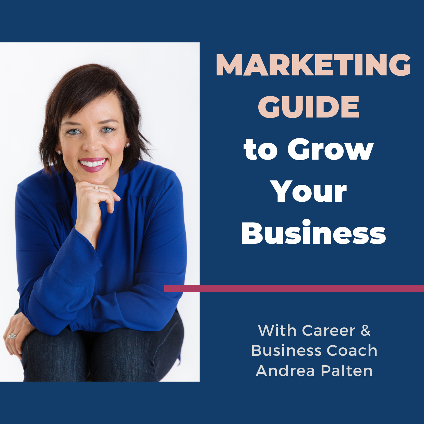 Marketing Guide to Grow Your Business | Listen Free on Castbox