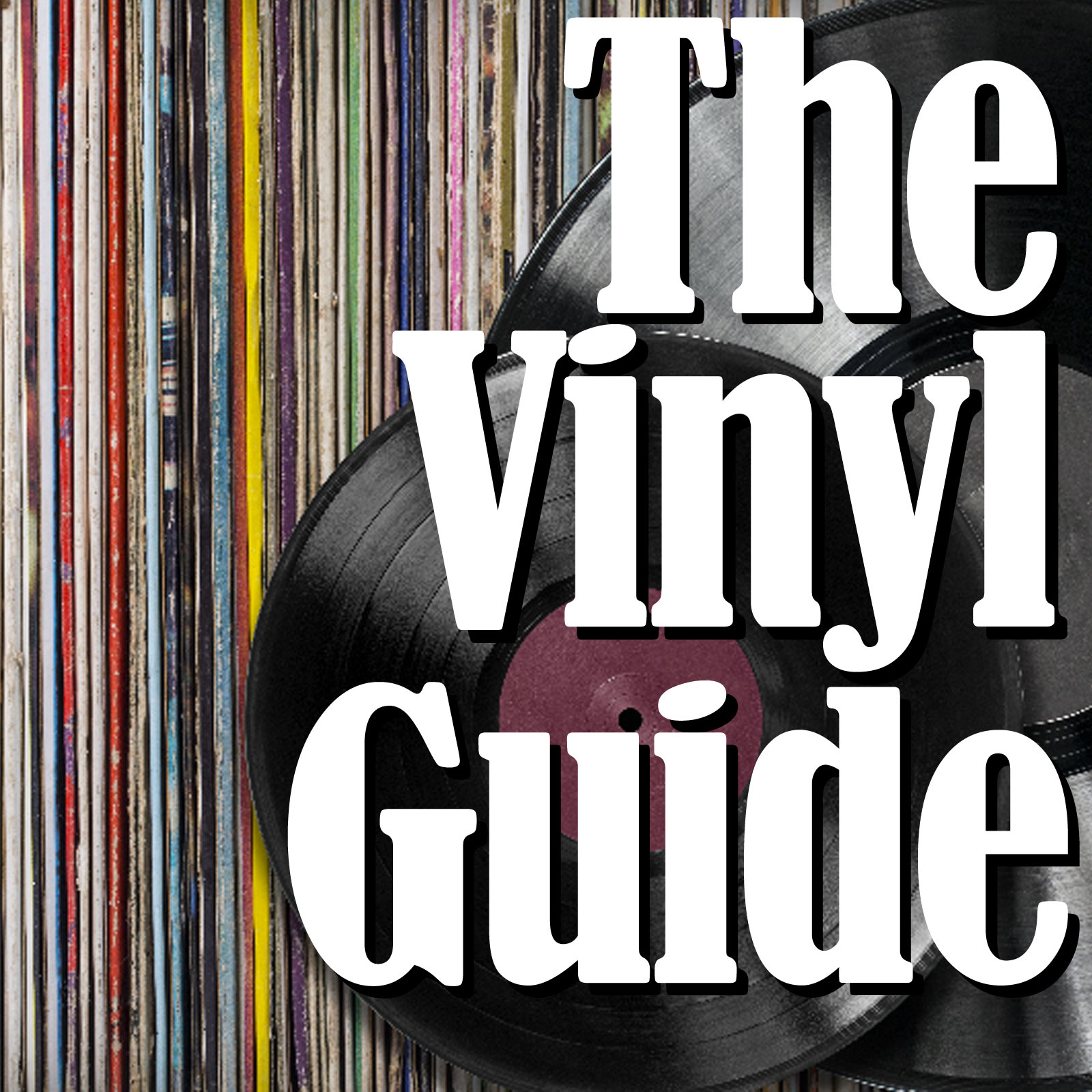 The Vinyl Guide show art