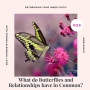 Artwork for What do Butterflies and Relationships have in Common?
