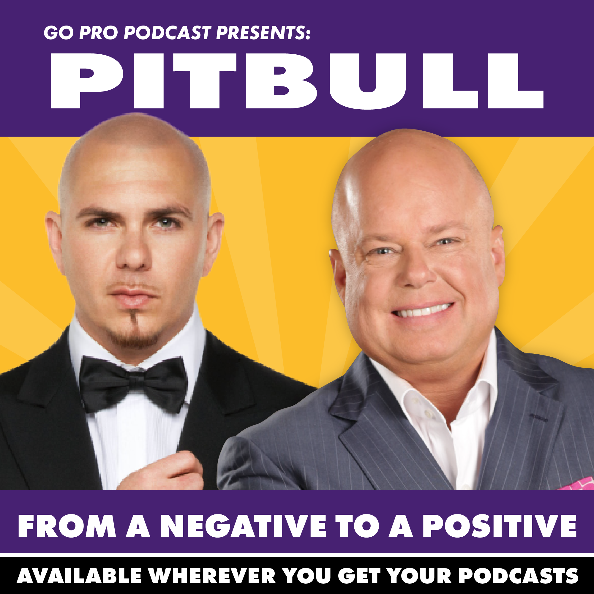 Pitbull:  From a Negative to a Positive