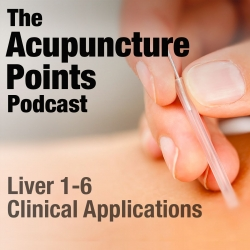 The Acupuncture Points Podcast: Acupuncture Points: Liver 1