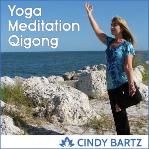 Yoga, Meditation & Qigong