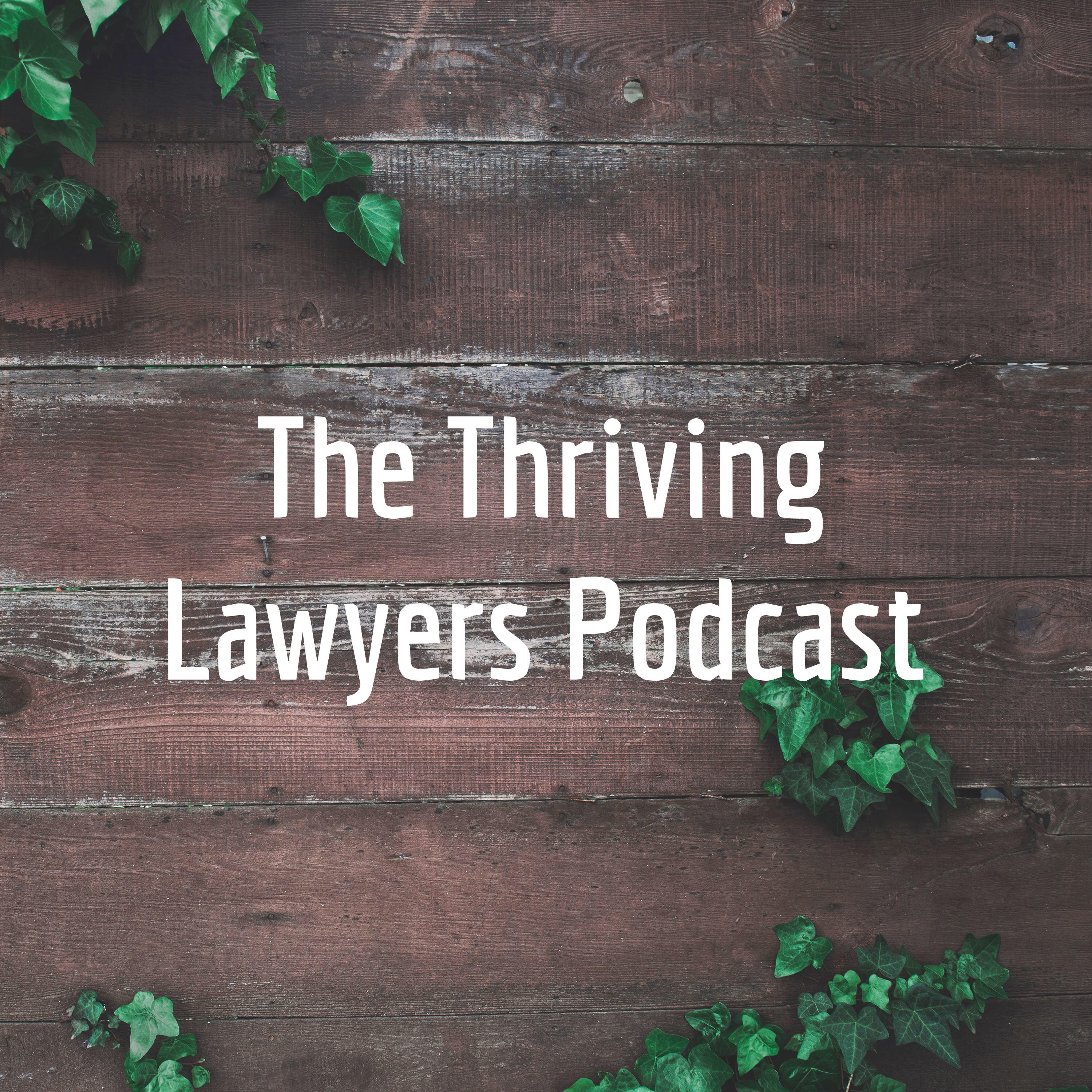 Artwork for The Thriving Lawyers Podcast: What's it all About?