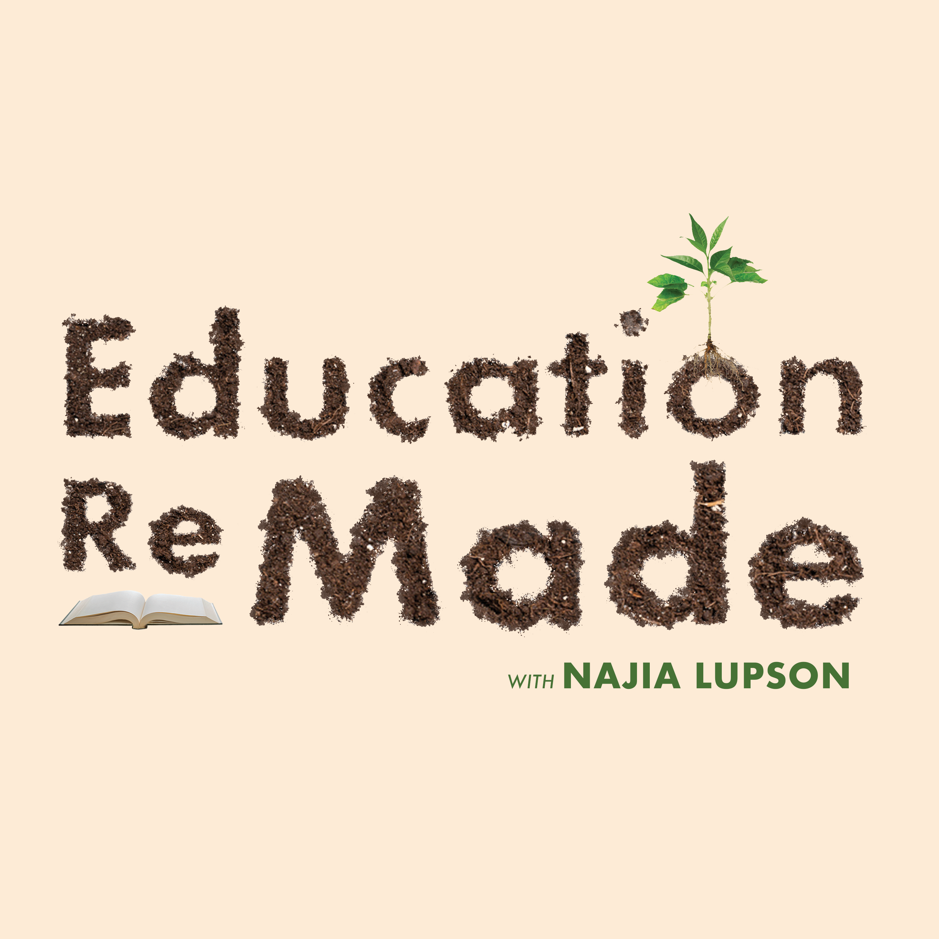 Education ReMade show image
