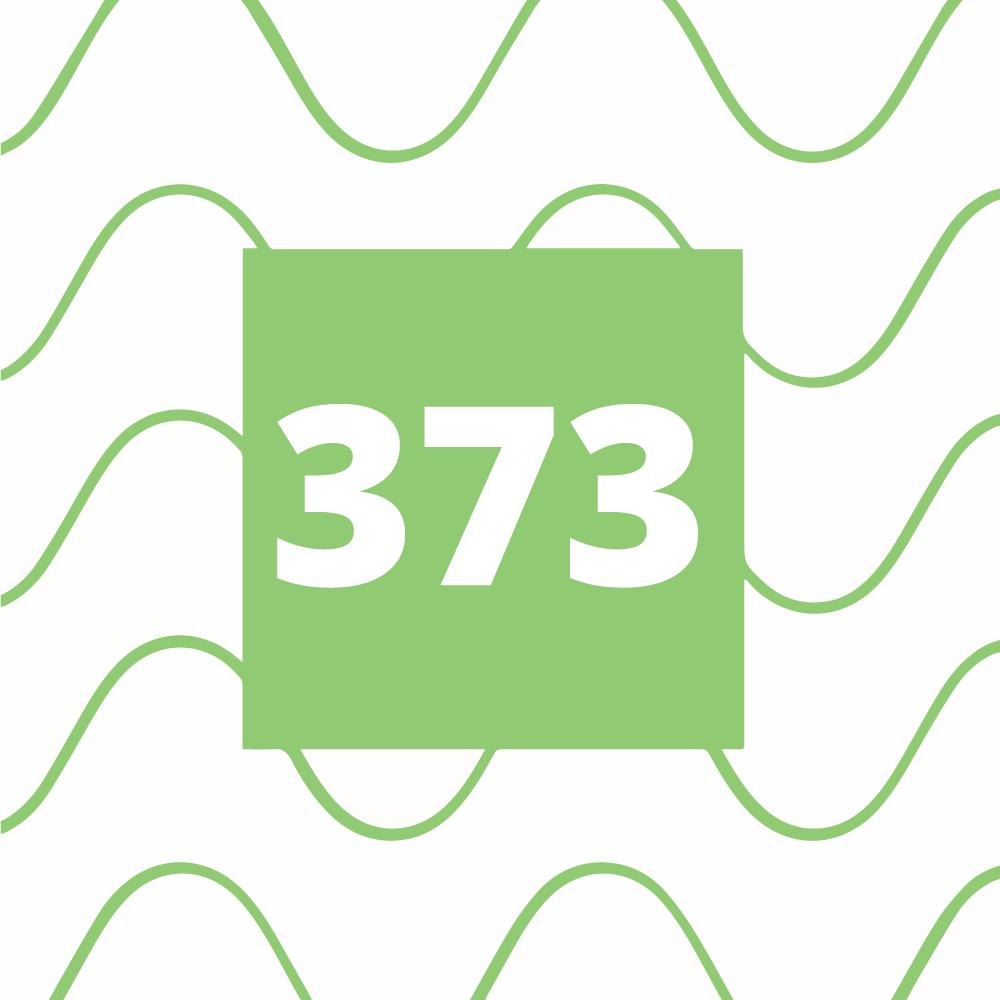 Avsnitt 373 - Börskörkortet indraget