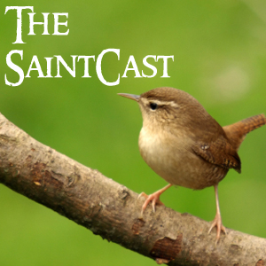 SaintCast #111, St. Stephen's Day, klling the wren, Stephen's tomb, Way of St. Vincent, audio feedback +1.312.235.2278