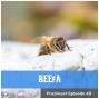 Artwork for FC 040: BEEfA