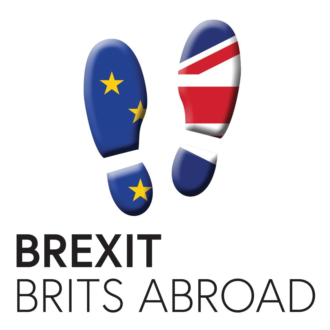 Advocating for British in Europe, from Referendum to COVID-19