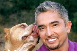 The Dog Whisperer and Human Nature