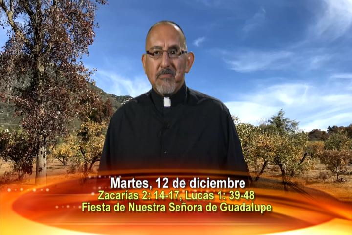 Artwork for Dios te Habla con Fr. Roberto Flores, SVD Tema el hoy: Fiesta de Nuestra Señora de Guadalupe