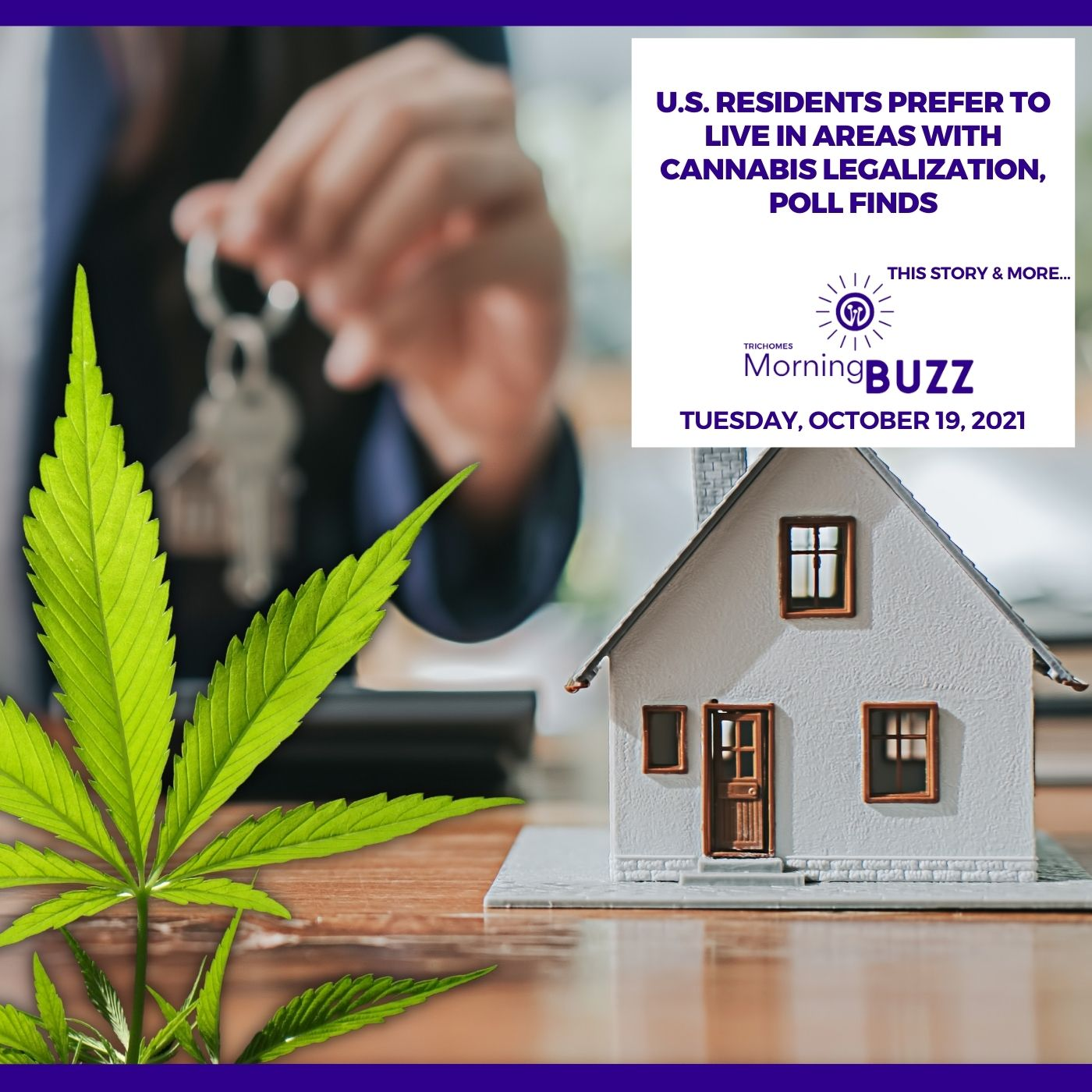 U.S. Residents Prefer To Live In Areas With Cannabis Legalization, Poll Finds show art