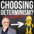 Does God Determine some Christians to Reject Calvinism? show art