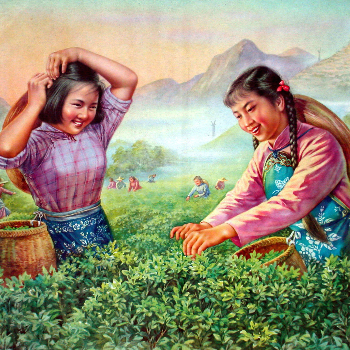 CHP-140-The History of Tea Part 1