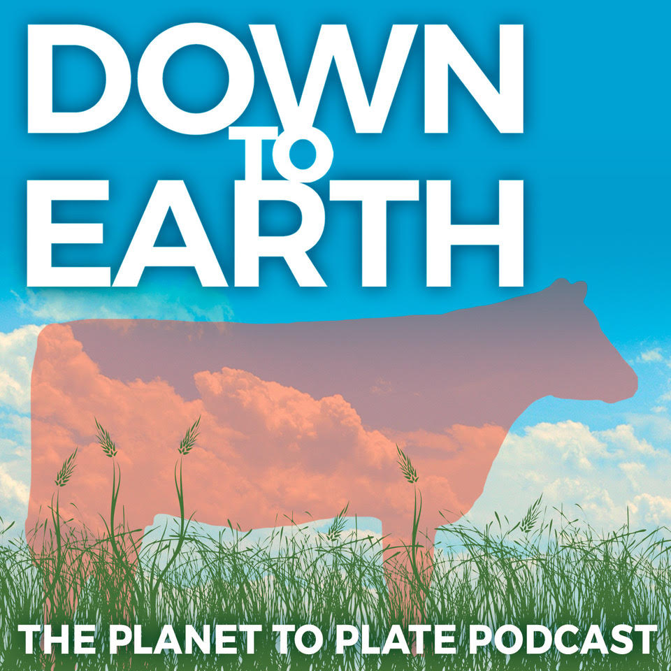 Down to Earth: The Planet to Plate Podcast show art