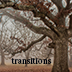 Transitions: Part One show art