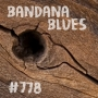 Artwork for Bandana Blues #778 - Thru The Cracks