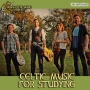 Artwork for Instrumental Celtic Music for Studying #371