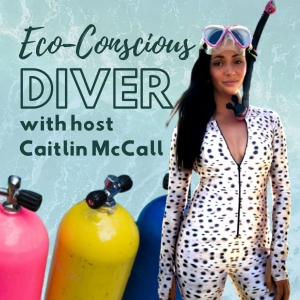 Eco-Conscious Diver: Sustainability and Diving