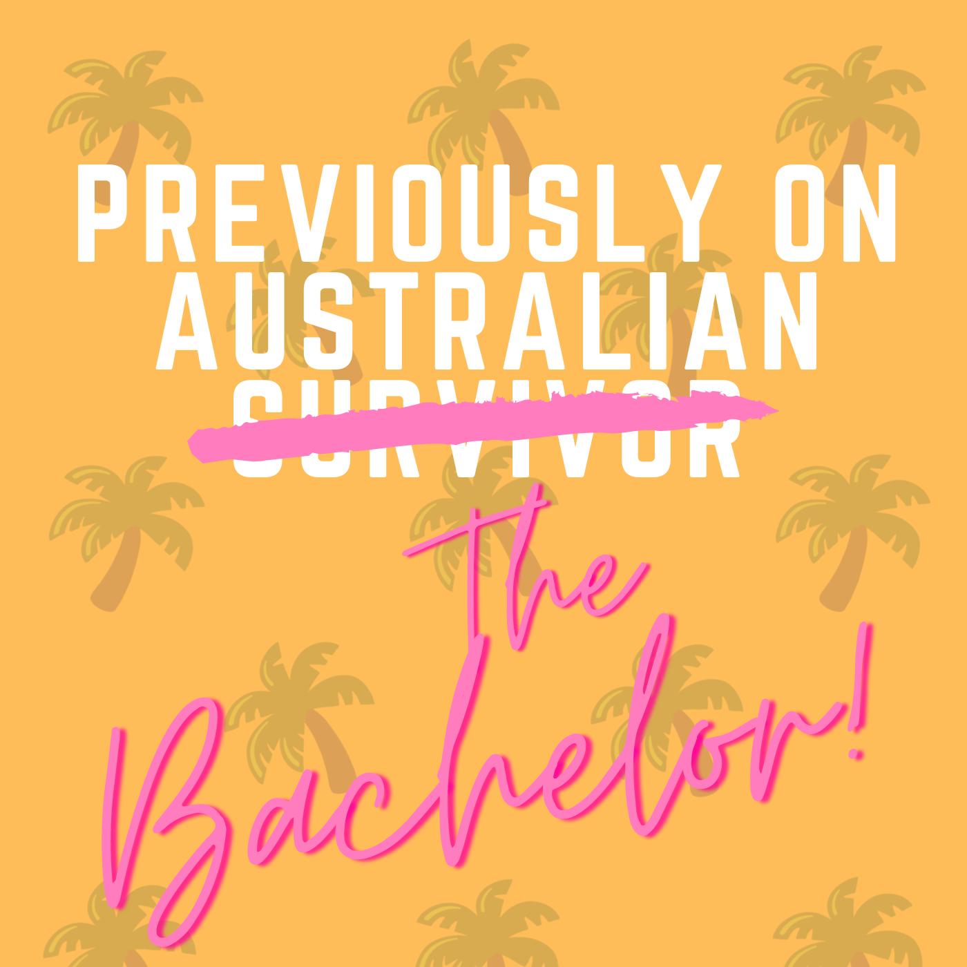 Previously on... Australian Survivor show art