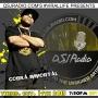 Artwork for 10.14.2015 QSJ Radio Interviews Cobra Immortal @cobraimmortal