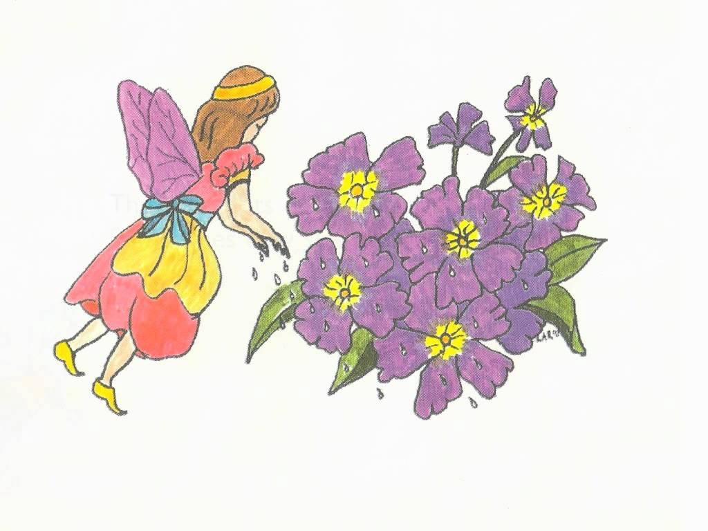 Artwork for Rosemary the Garden Fairy: Grow a time-telling garden