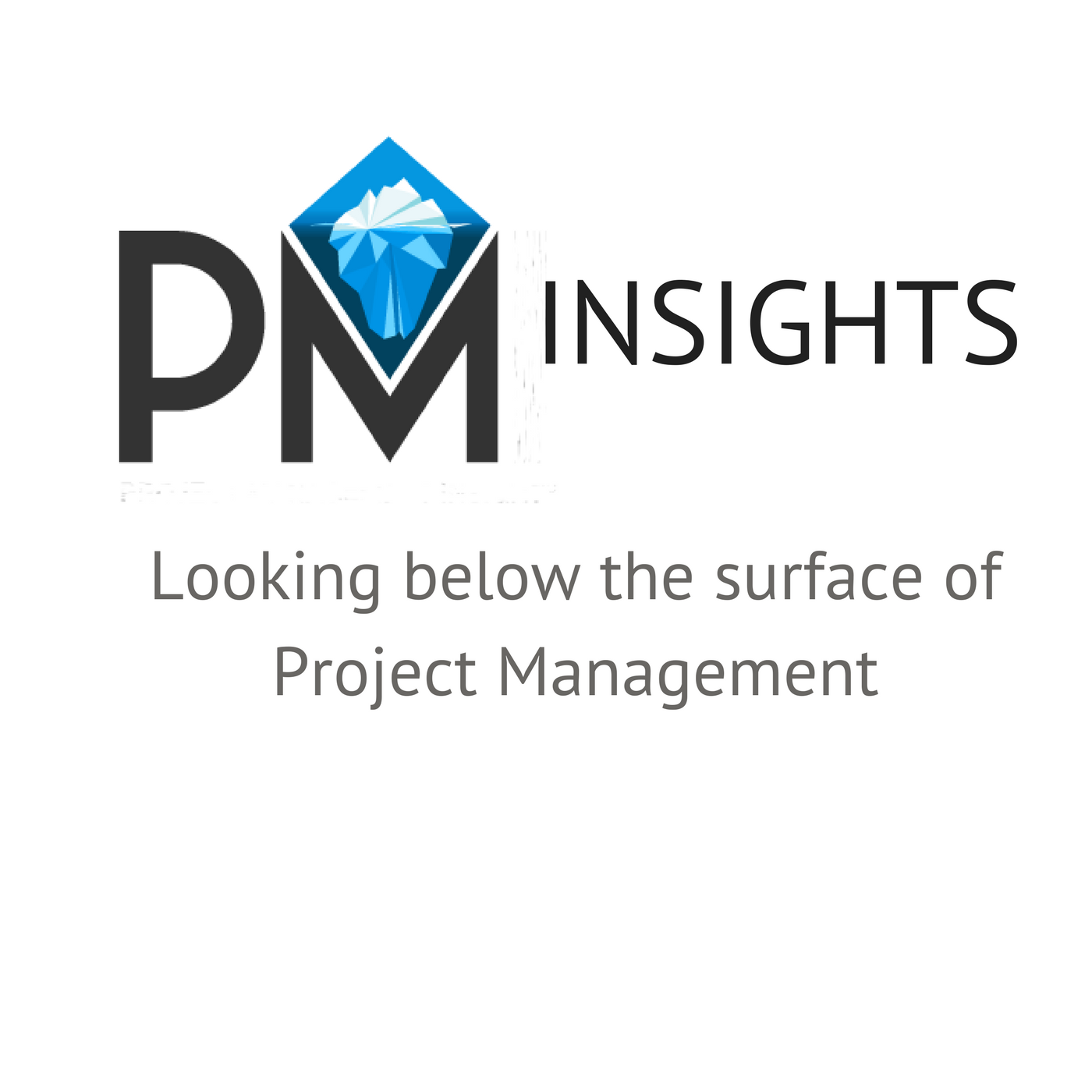 Project Management Insights show art