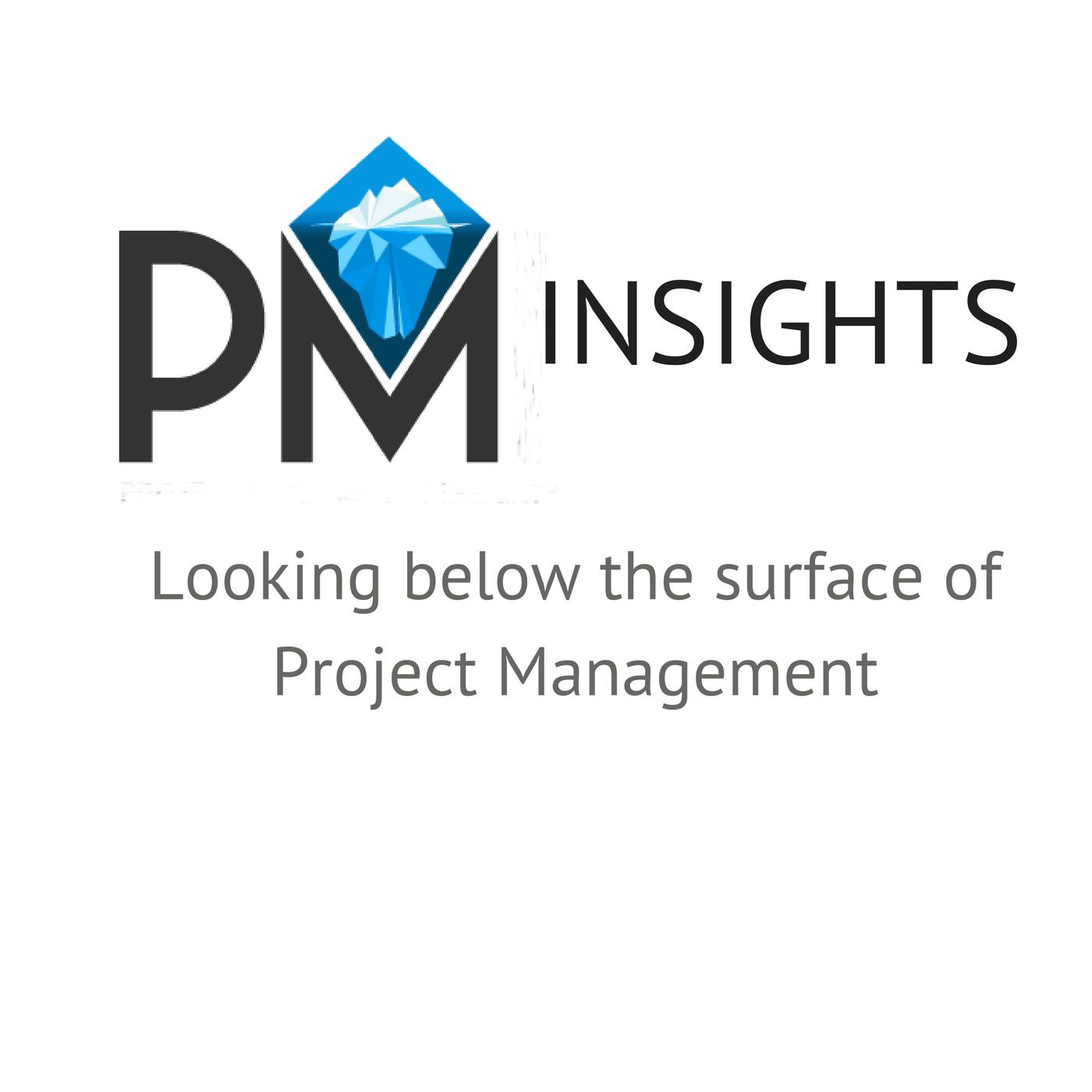 Artwork for Let's get raw about risk management [Project Management Insights Episode 13]