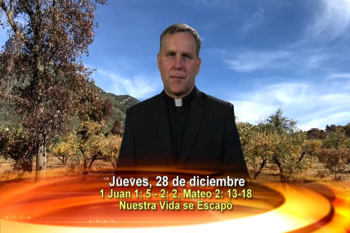 Artwork for Dios te Habla con Fr. Pavol Sochulak, SVD; Tema el hoy: Nuestra vida se escapó como un pájaro de la trampa de los cazadores.