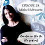 Artwork for Episode 24 - Interview with Mishel Schwartz