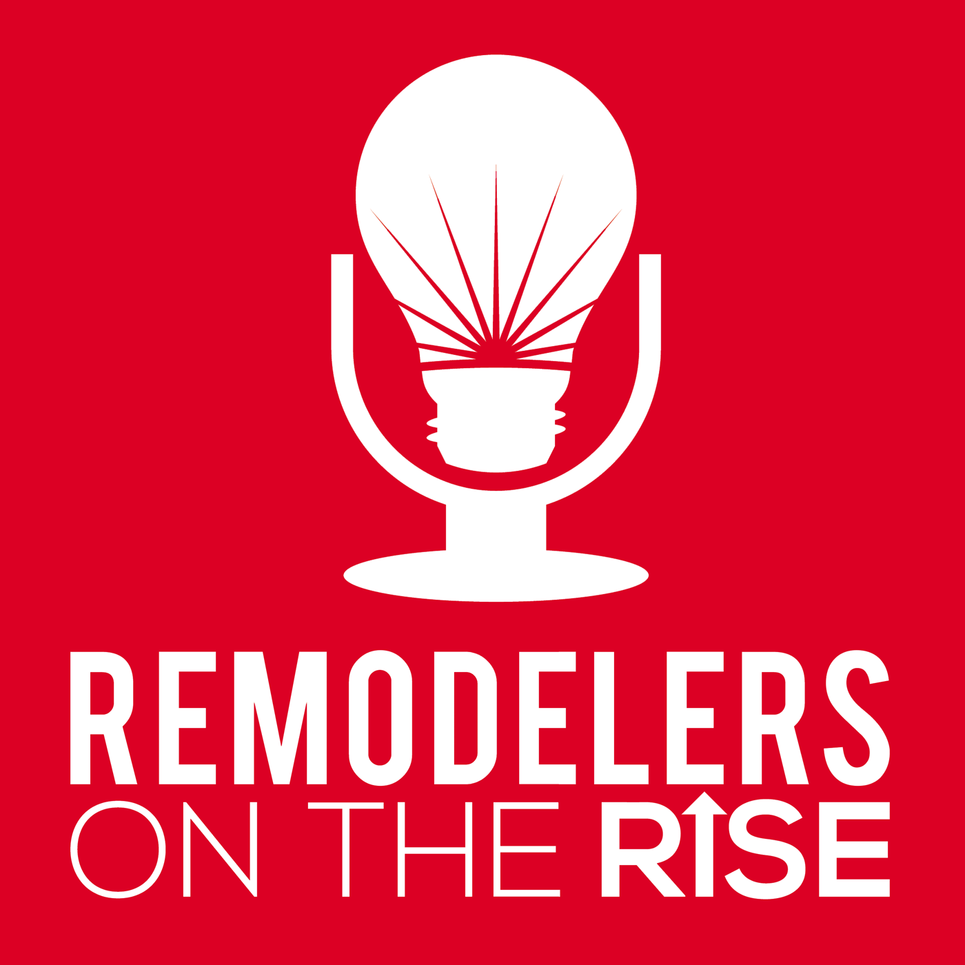 Remodelers On The Rise show art