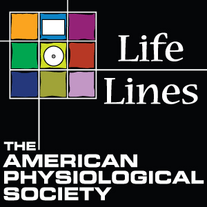 Life Lines show art