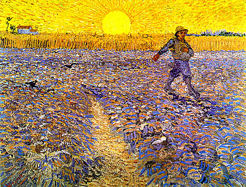 Good Soil for Life! The parable of the Sower.