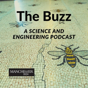 The Buzz: A science and engineering podcast