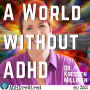 Artwork for 322 | A World Without ADHD With Kirsten Milliken