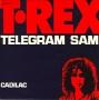 Artwork for T.Rex - Telegram Sam - Time Warp Radio Song of The Day 6/1/16