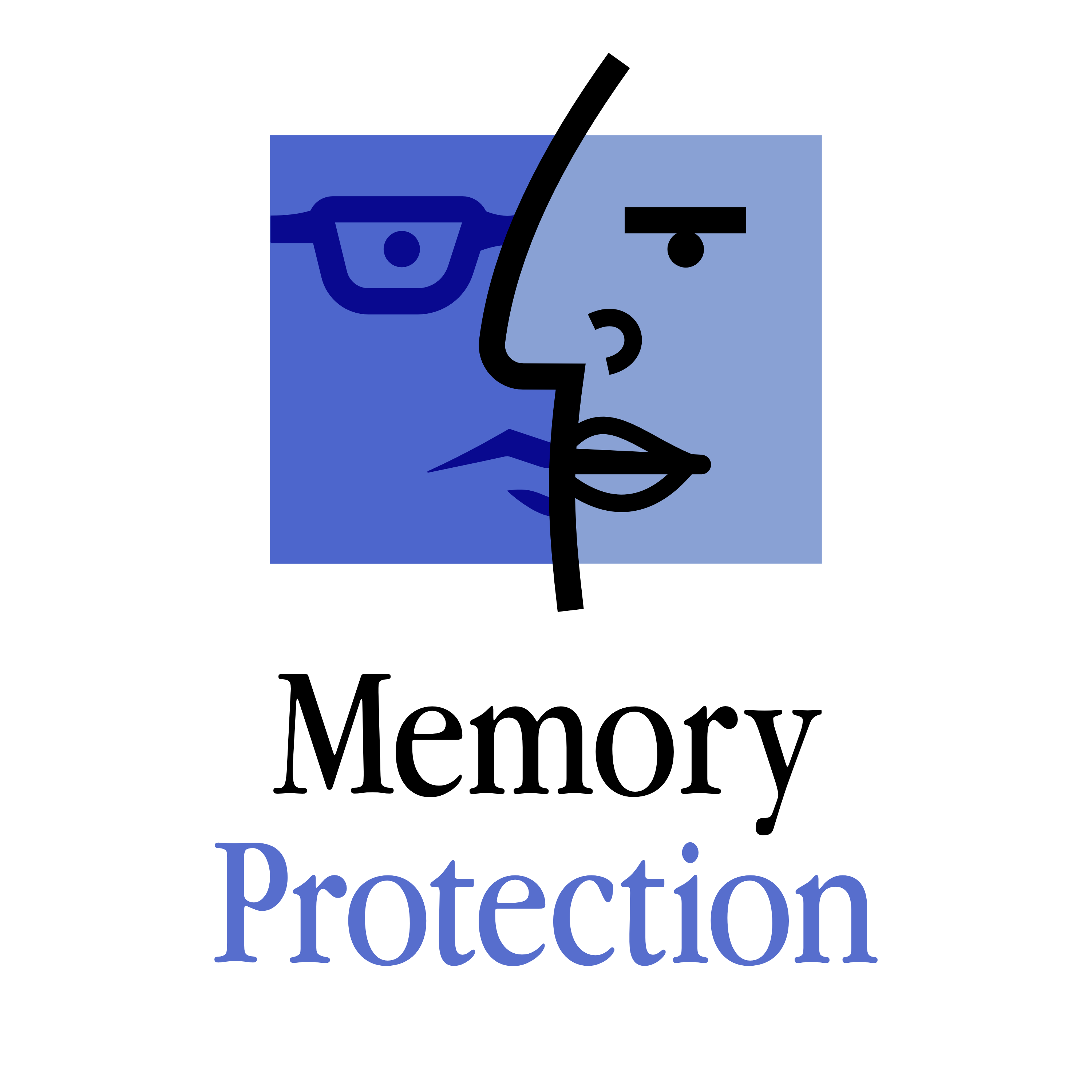 Memory Protection show art