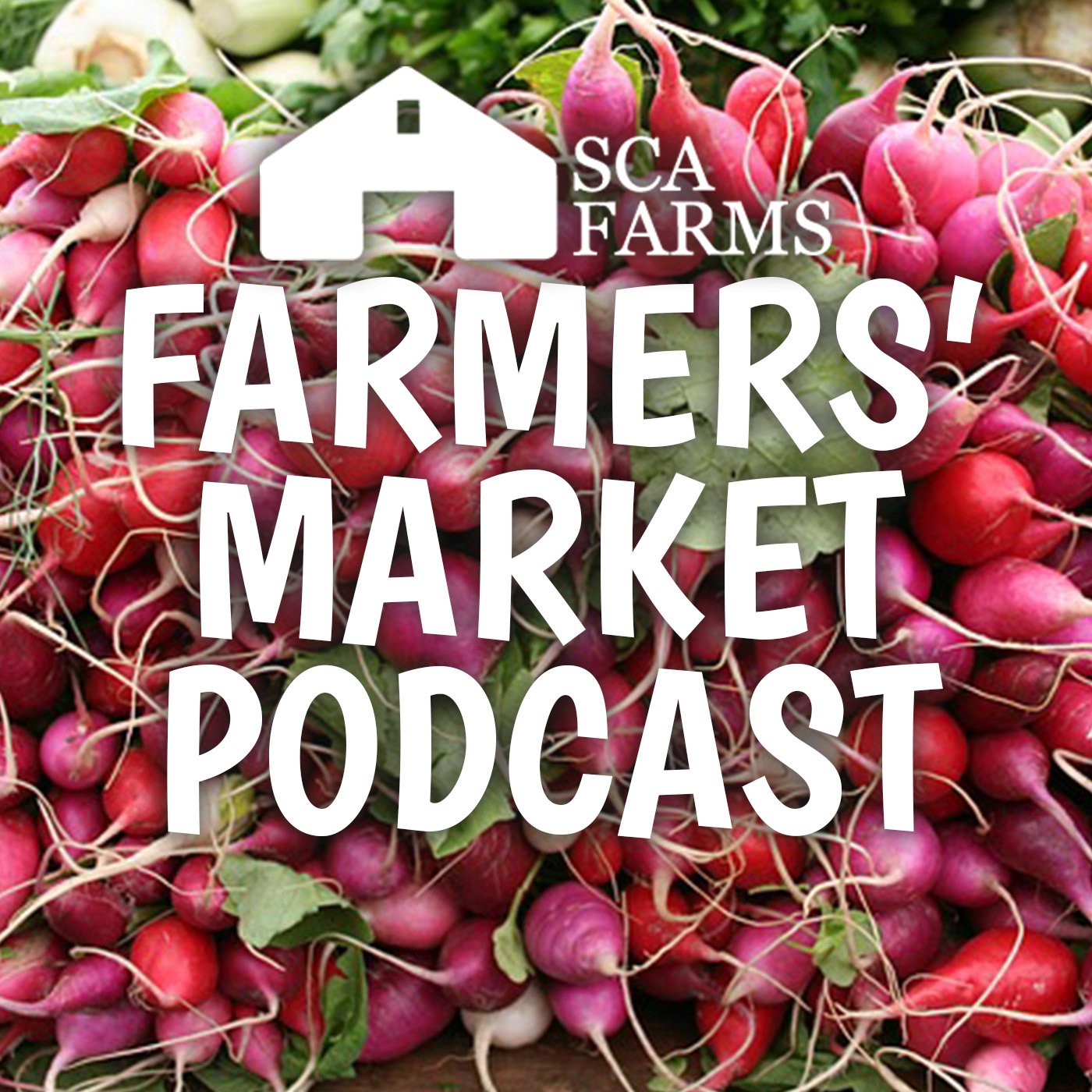 Artwork for Introduction  to the Farmers' Market Podcast